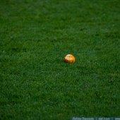 \»Динамо\» 1:2 \»Шахтер\» — 7 апреля 2013г. — Фото