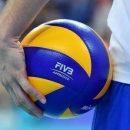 Чемпионат мира. Польша — Аргентина. Смотреть онлайн. LIVE